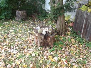 Miller Shrine down