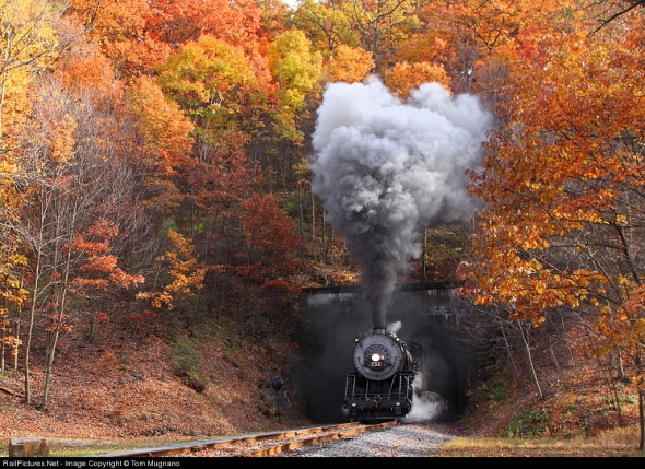 fall-train-6