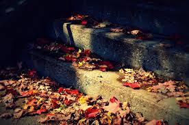 fall-184